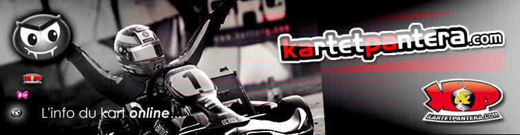 remorque karting occasion trouvez le meilleur prix sur voir avant d 39 acheter. Black Bedroom Furniture Sets. Home Design Ideas
